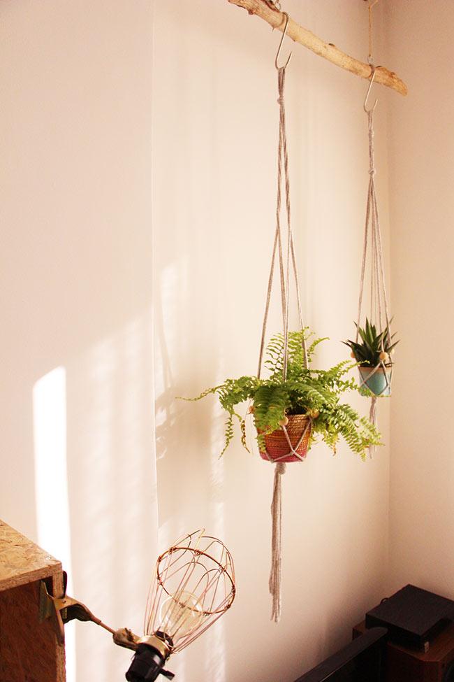 Mes plantes suspendues blueberry home - Comment accrocher une lampe au plafond ...